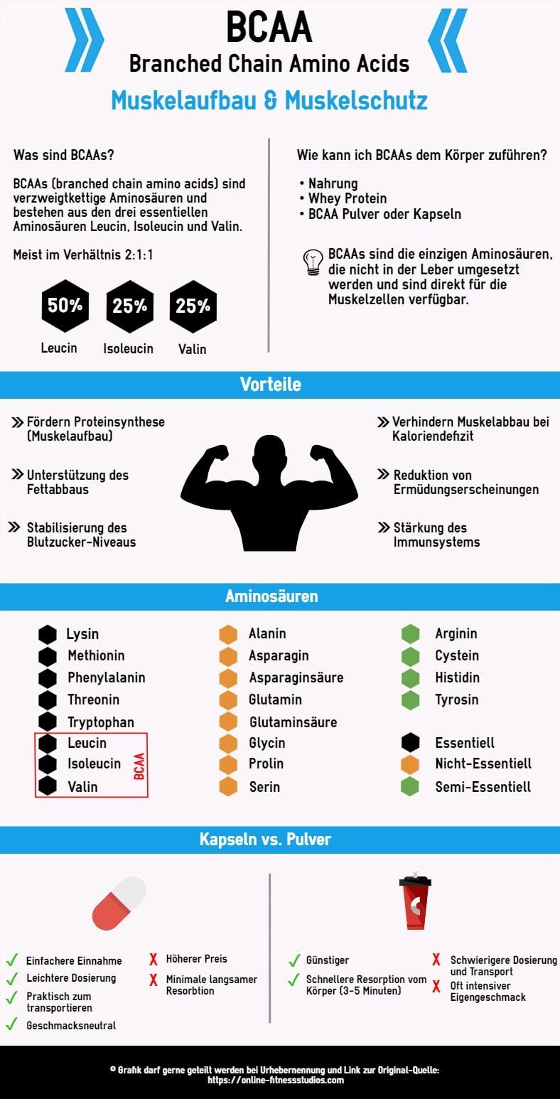 BCAA Infografik - BCAAs