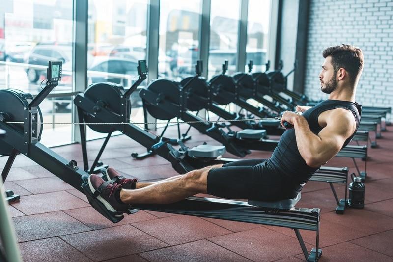 Rudergerät Training Muskeln